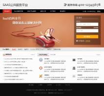 SAAS公共服务平台网站PSD模板
