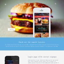 国外美食APP介绍网站html模板