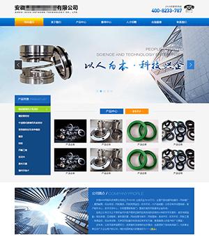 安徽某科技公司企业网站
