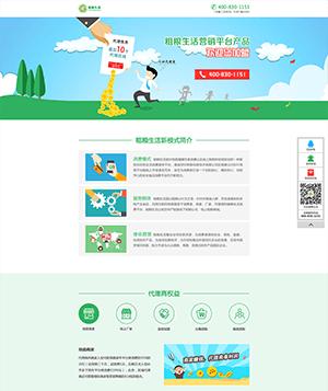 扁平化营销平台网站PSD模
