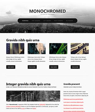 Monochromed主题企业网站html模板