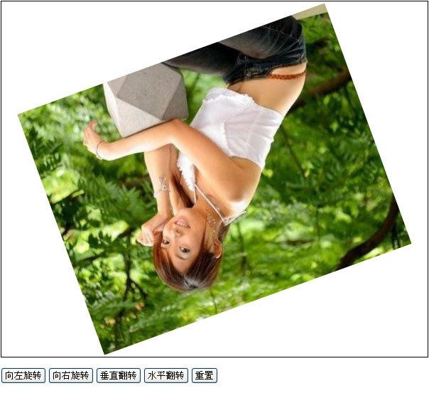 ImageTrans.js - js图片缩放、