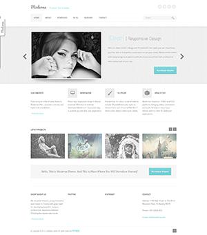 Moderna白色可切换10中风格的响应式html网站模板