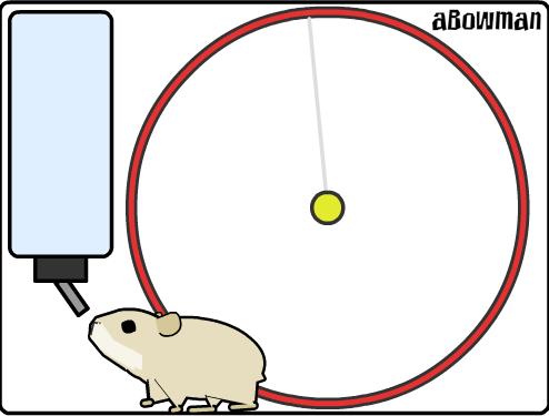 可以喂食和跑轮的仓鼠透明flash