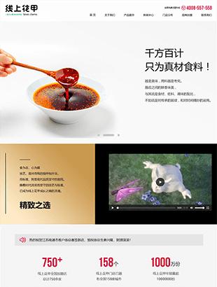 精美的花甲美食网站HTML模