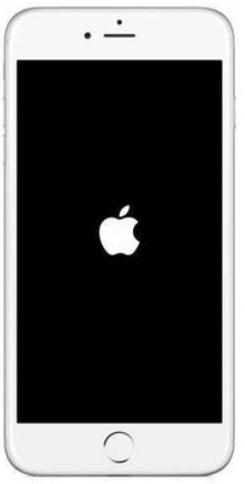 iPhone开机一直卡在logo画面的解决办法