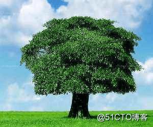 带你通关全栈树型结构设计:从数据库到前端
